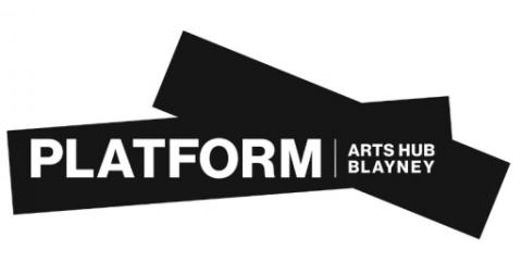 Platform Arts Hub