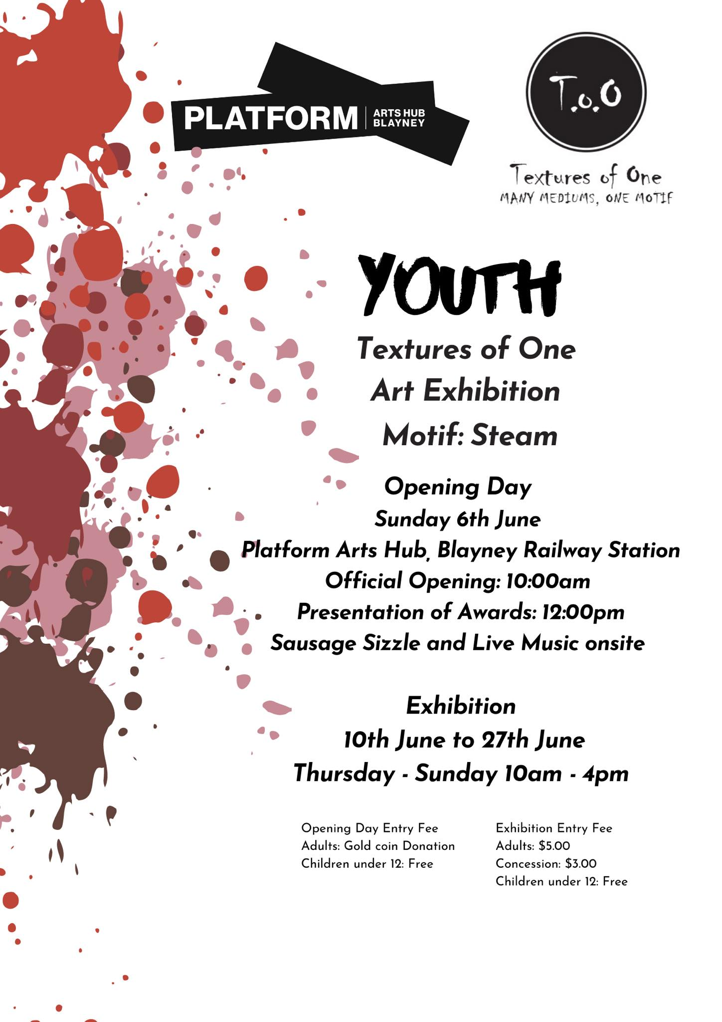 Poster for the Youth Textures of One exhibition. Details in text have been add to the text on this page.